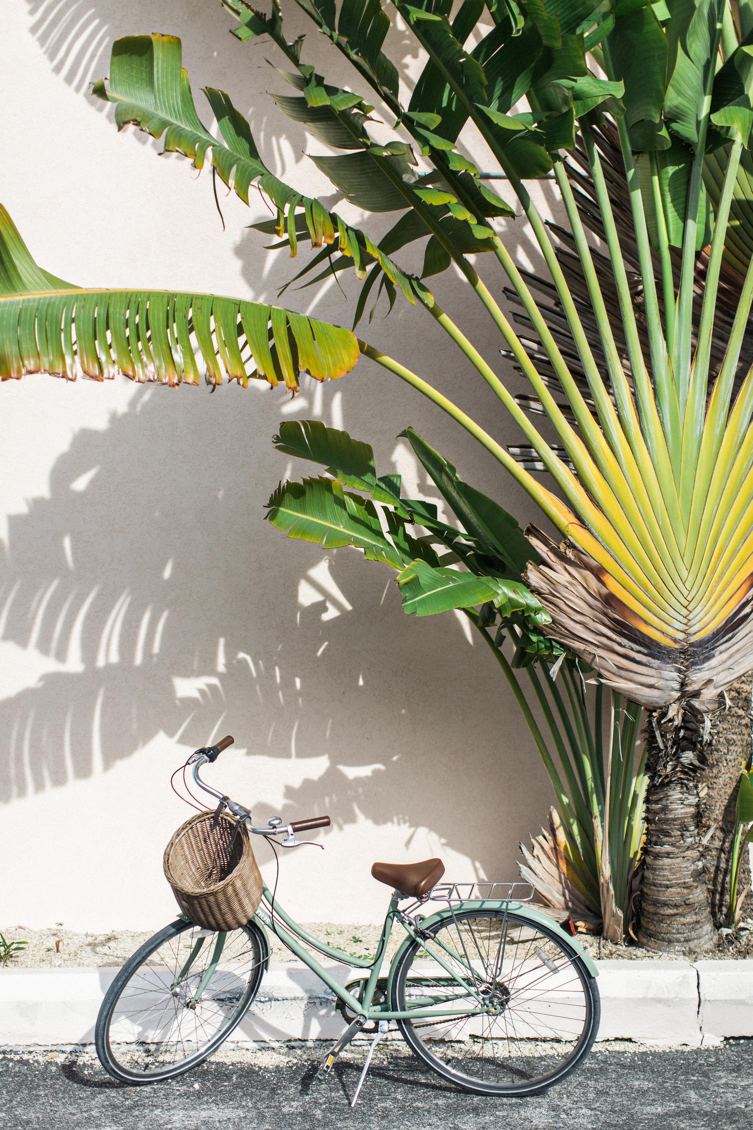 Destination | Cayman Islands