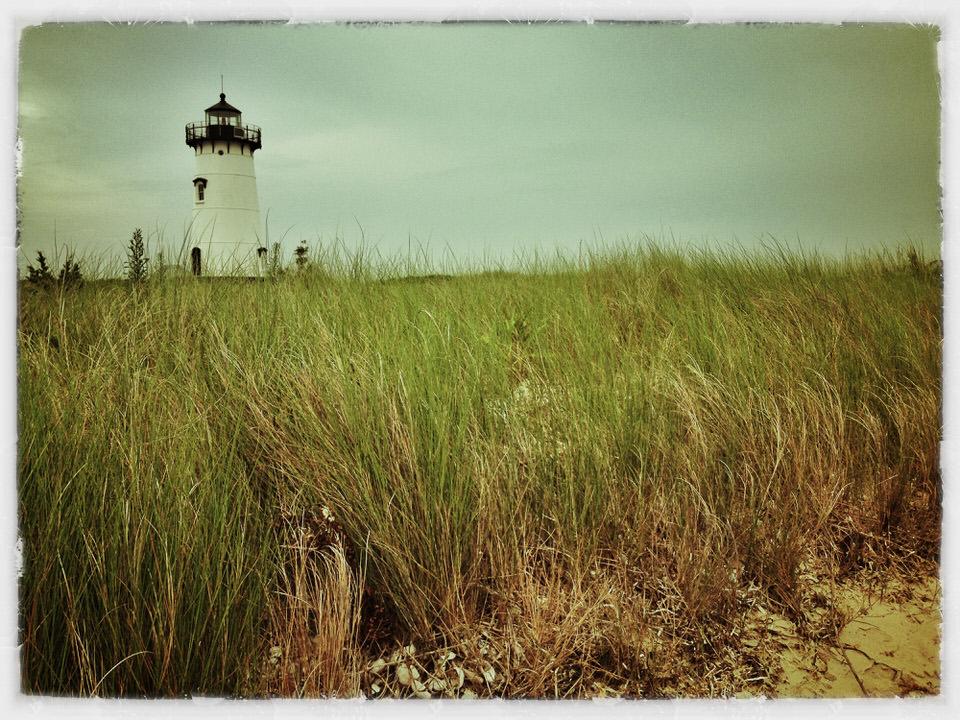 Edgartown Light seagrass