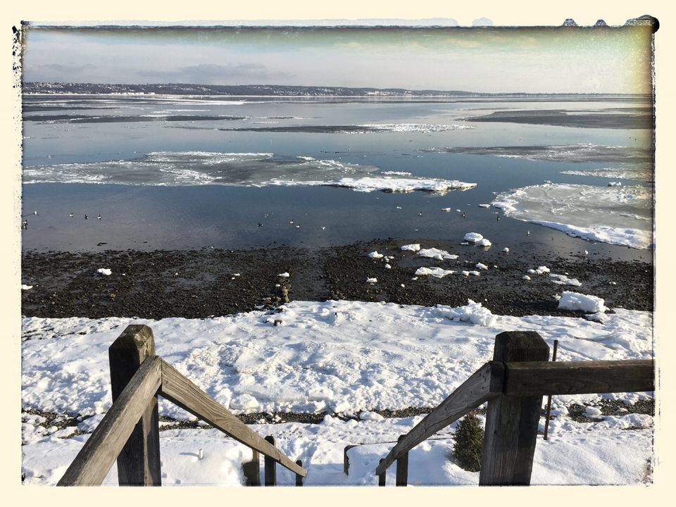 Mount Hope Bay bergs