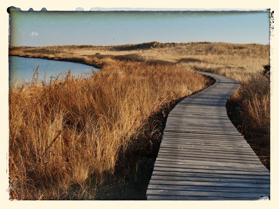 Circuitous path