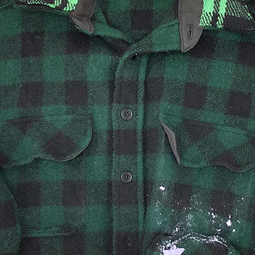 PLAID GREEN CROP.jpg