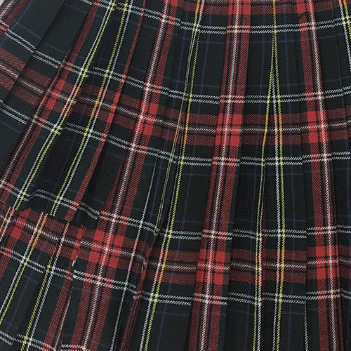 RED PLAID SKIRT.jpg