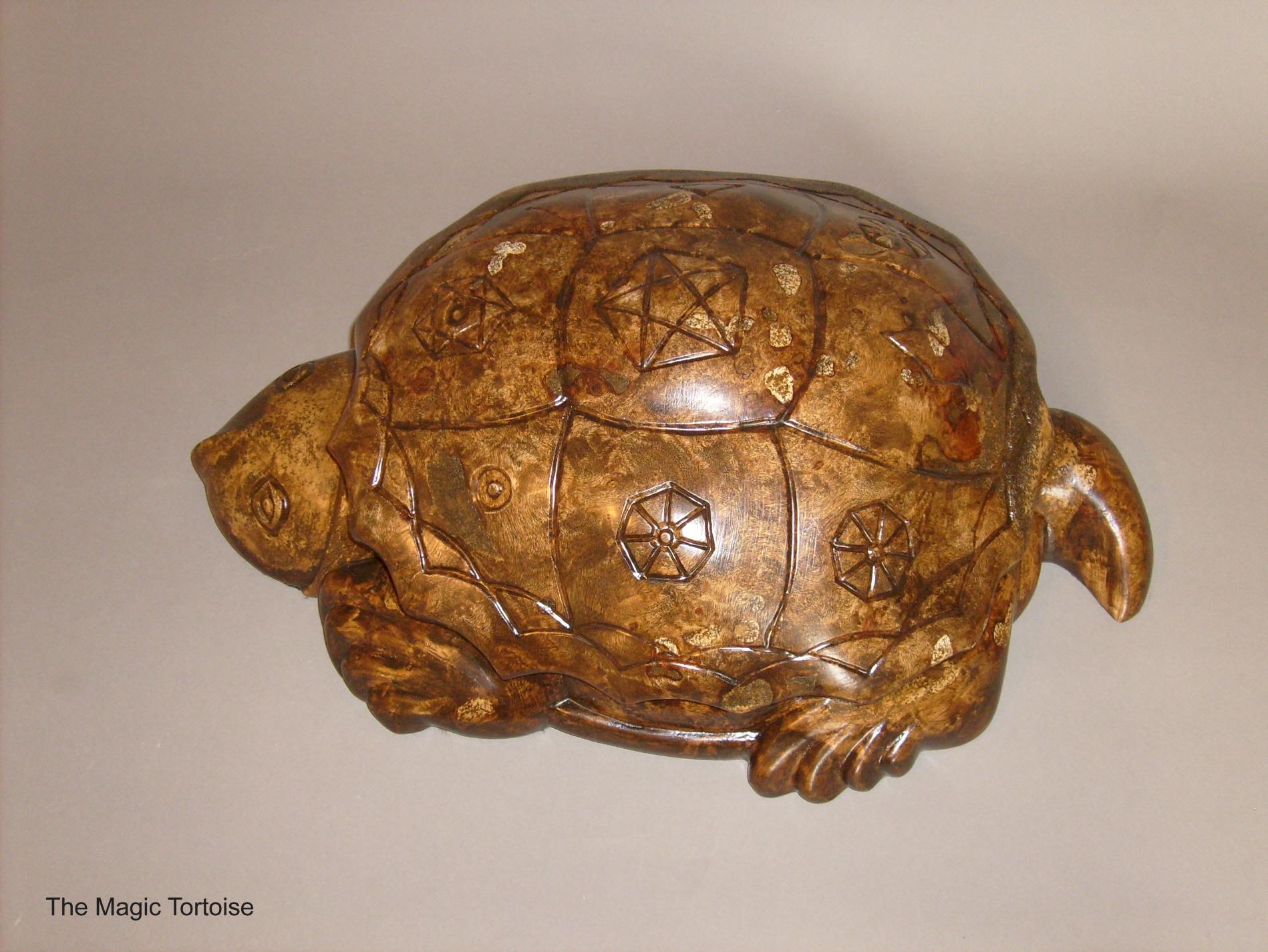 The Magic Tortoise
