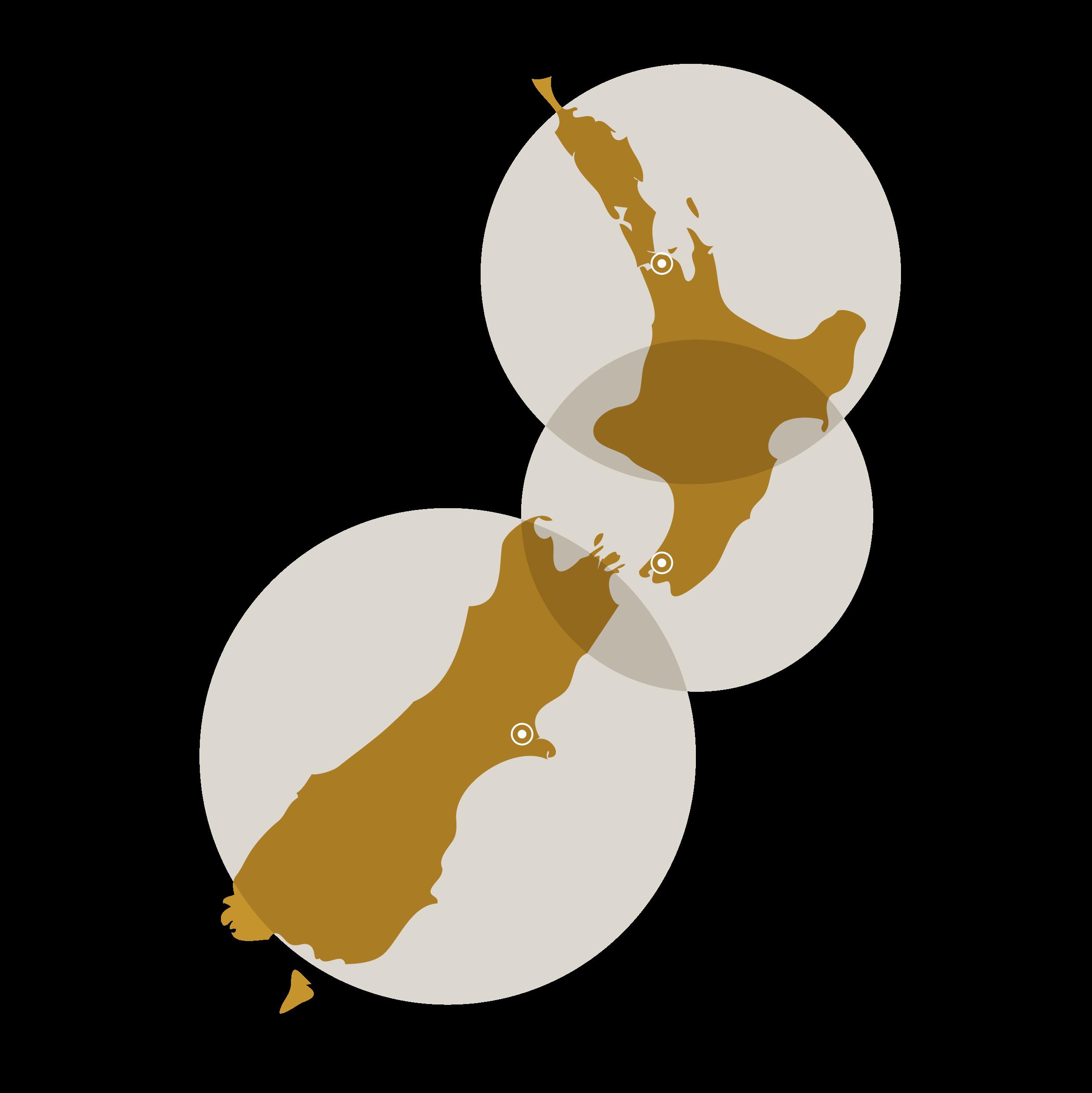 NZ Map RGB-01.png