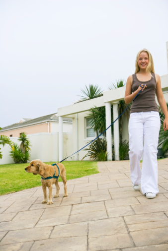 teen girl walking dog
