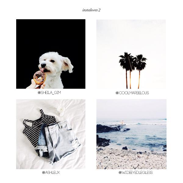 instagram loves