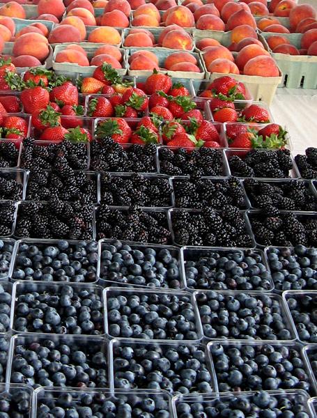 farmers-overview-fruit.jpeg