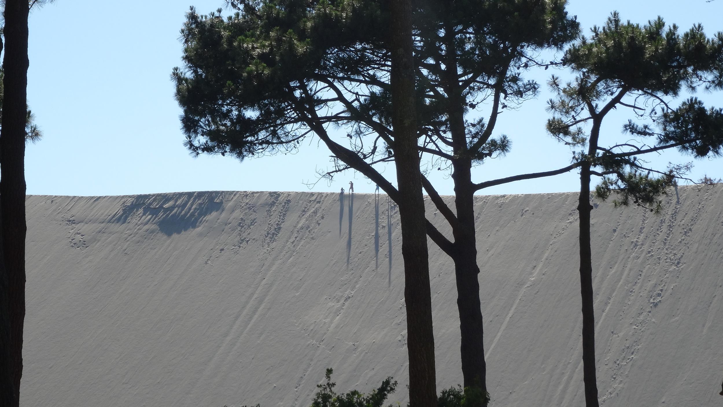 Sand dunes around LaTeste.