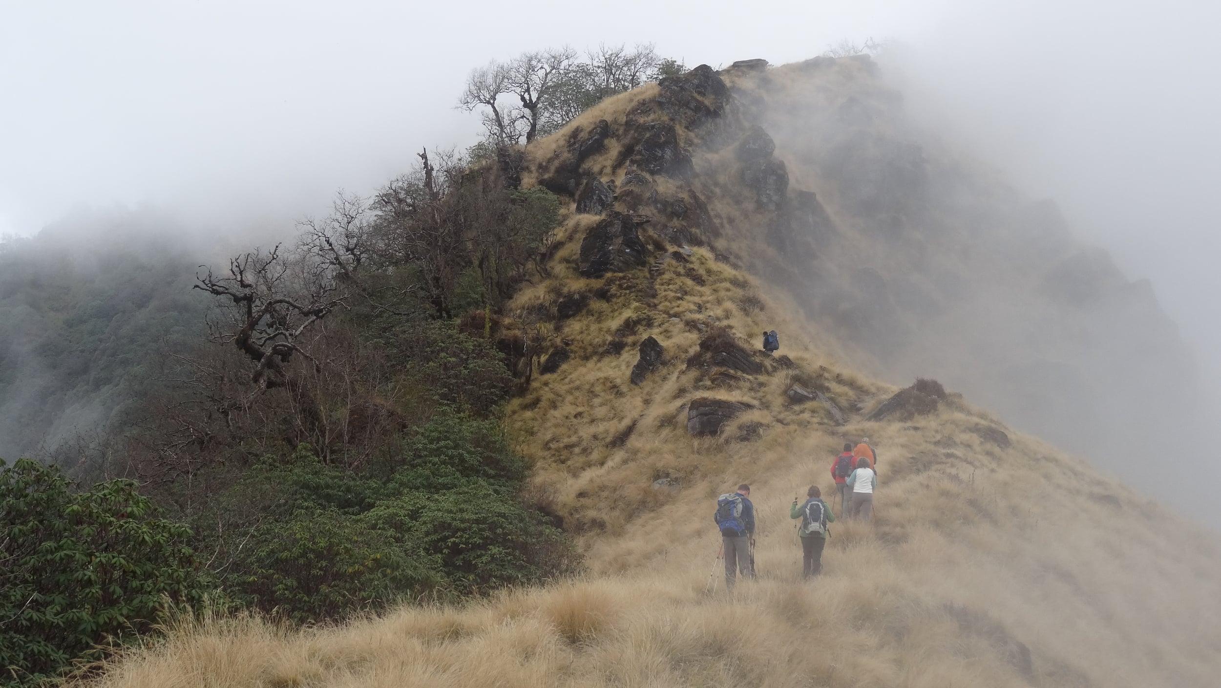 Trek Towards High Camp