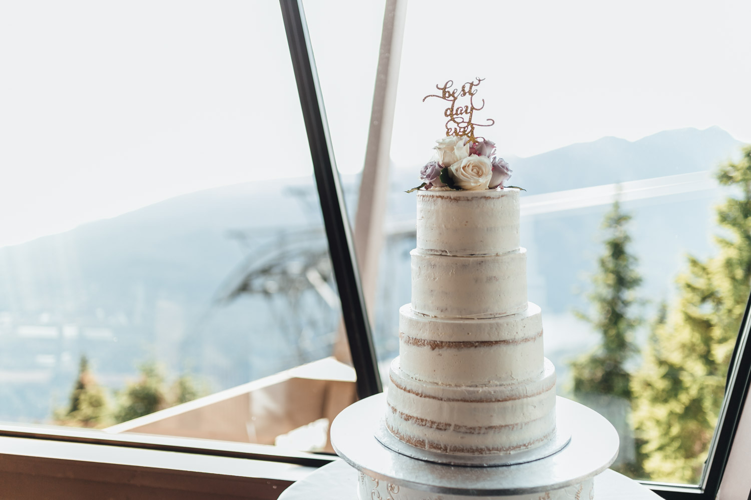 grouse-mountain-wedding-north-vancouver-bc-217-2.jpg