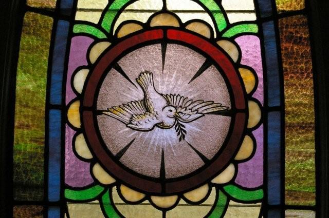 stainedglass_dove.jpg