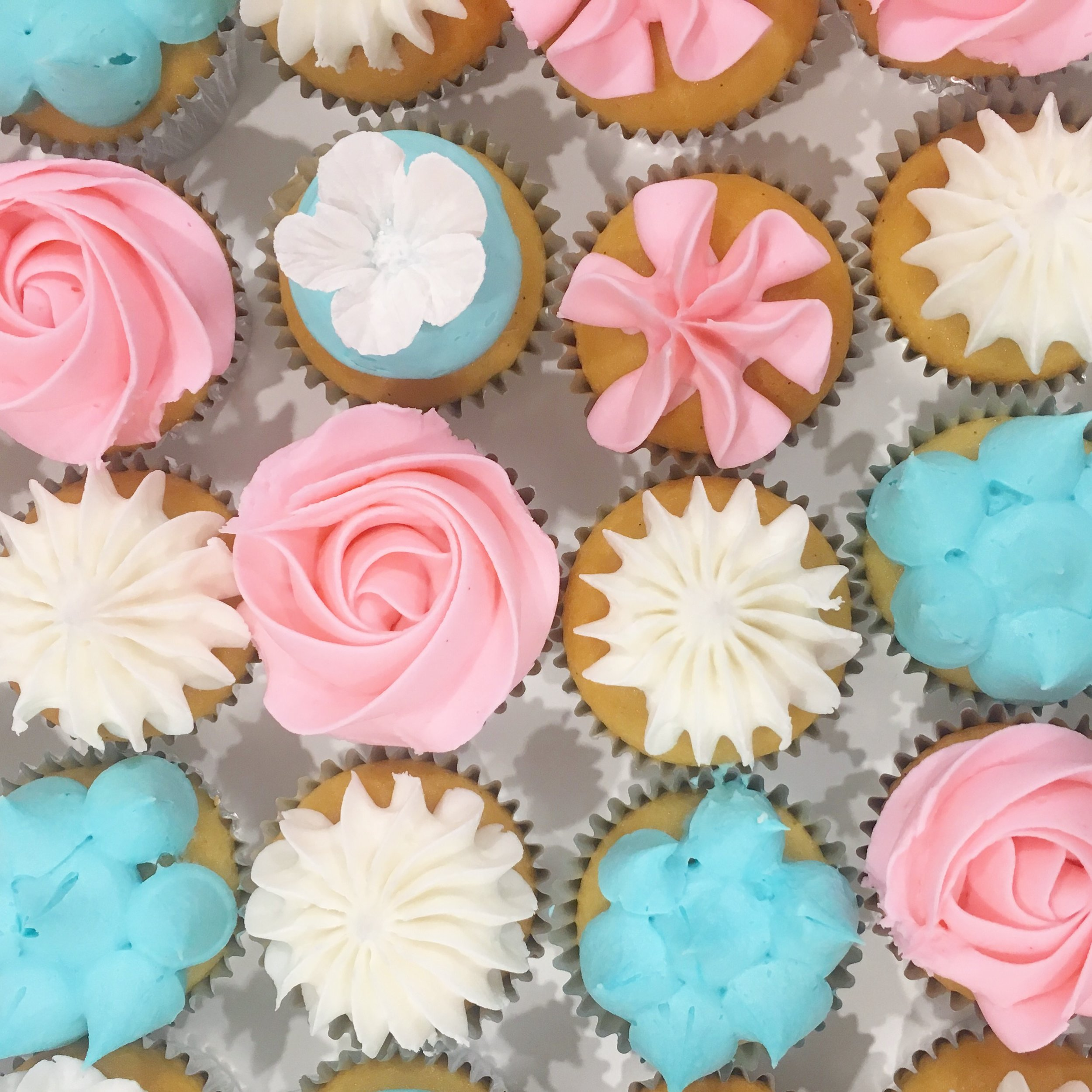 Pink & Blue Flower Cupcakes