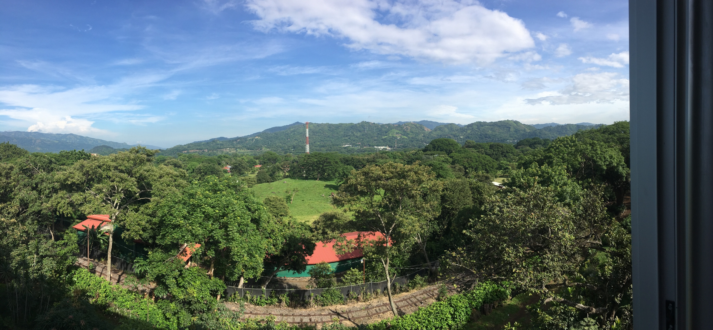 View of the rain forest from a Costa Rican Airbnb. Photo by Sara Benitez, M2.