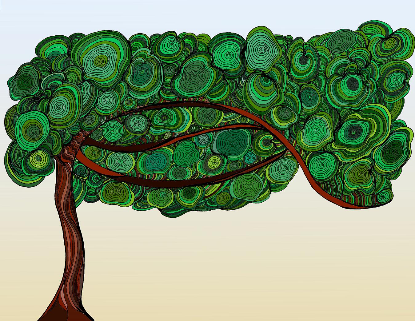Southern Evergreen. By Agnieszka Grabon, PhD.