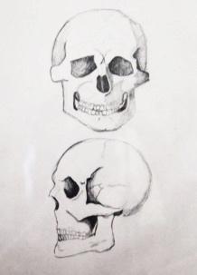 Dani_Shahin_Skull.jpeg