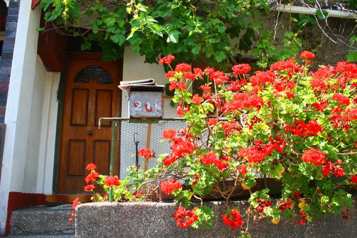 KitiyaPalaskasflowers3