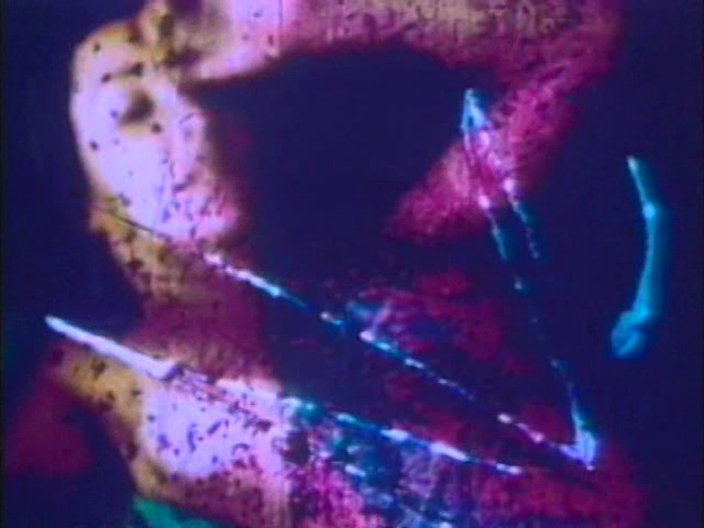 """Abstracting The Gaze: The Queer and Erotic Cinema of Flaming Creatures and Fuses - by J. Simpson""""Carolee Schneemann's Fuses received an even stronger critical response when it first screened at Cannes Film Festival in 1968. Speaking on the film's hostile reaction, rivaling that of Stravinsky's The Rites Of Spring, Schneemann told film critic Scott MacDonald, 'One of the most extreme things happened when I was in the audience at Cannes. About forty men went berserk and tore up all the seats in the theater, slashed them with razors, shredded them, and threw all the padding around. It was terrifying, and peculiar.'"""""""