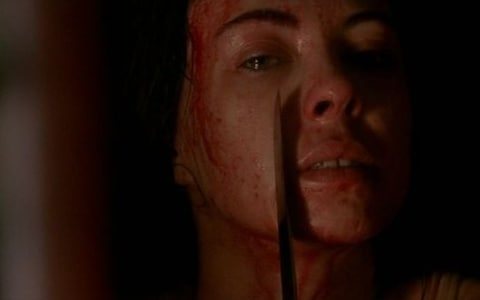 "The Skin We're In: Subverting The Male Gaze In New French Extremity - By Addison Peacock""Women are not pretty porcelain dolls or wide-eyed vacant sex toys. Women are hair and teeth, sharp edges and hunger, are pain and survival. We're here, we're gross. Get used to it."""