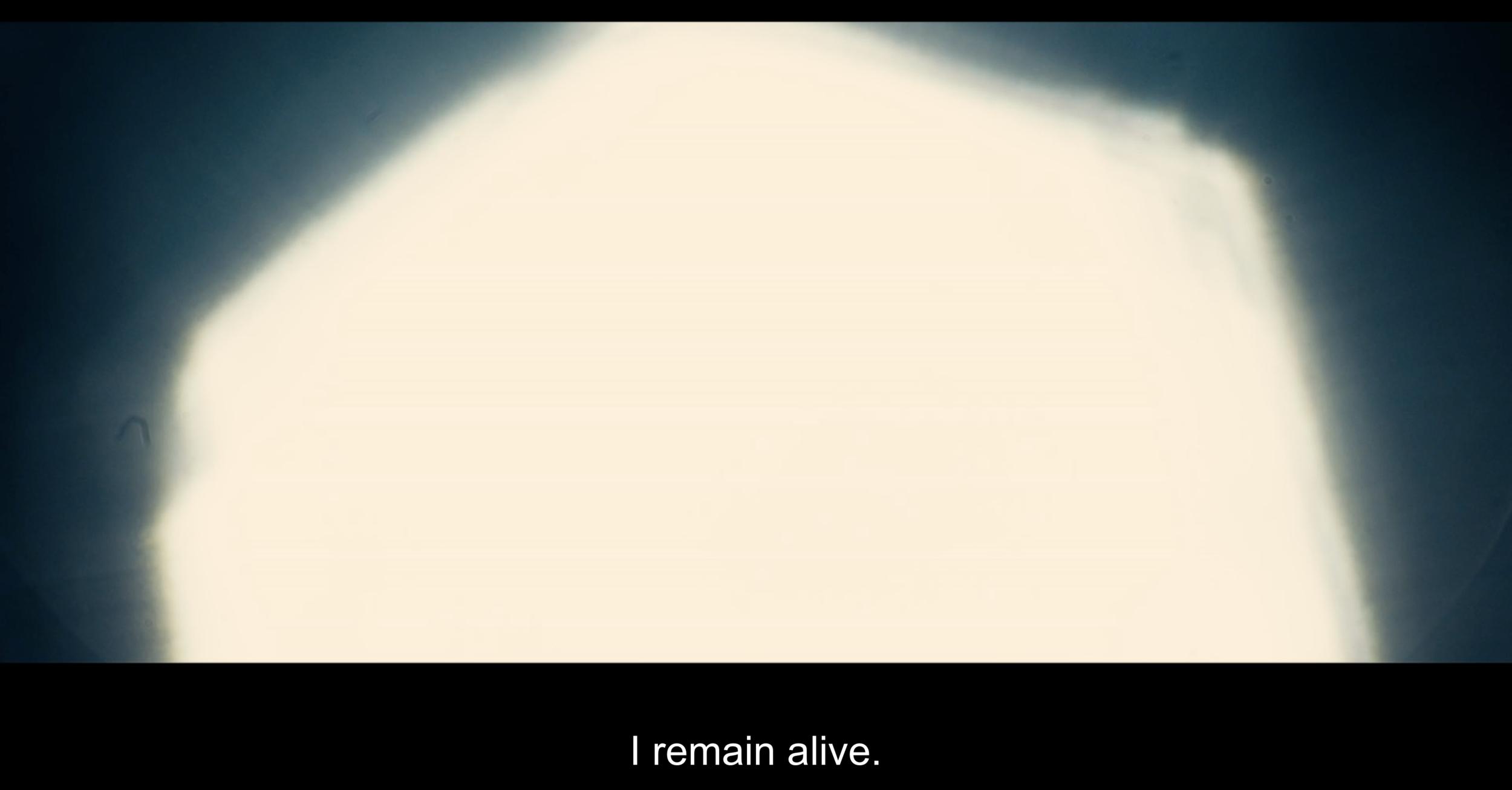Screen Shot 2019-07-05 at 9.51.54 PM.png