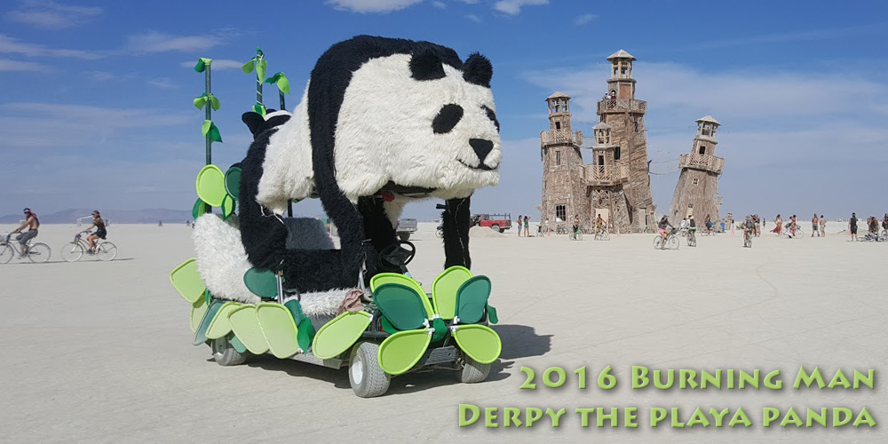 2016 Burning Man: Derpy Version 3.0
