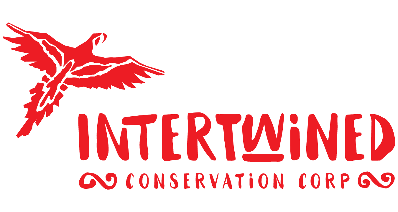 Intertwined Conservation Corporation.png