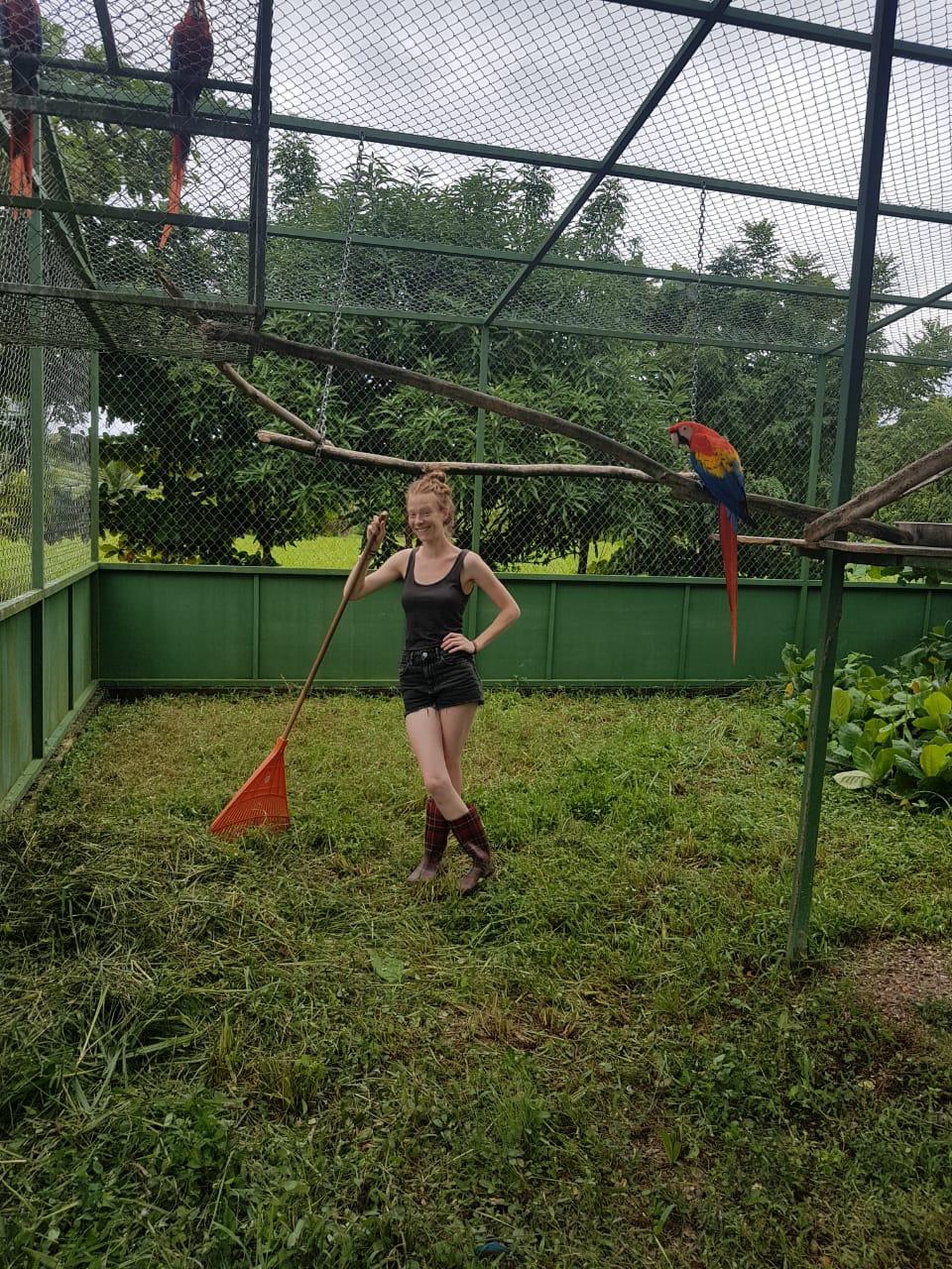 Nele volunteers to help clean an aviary.