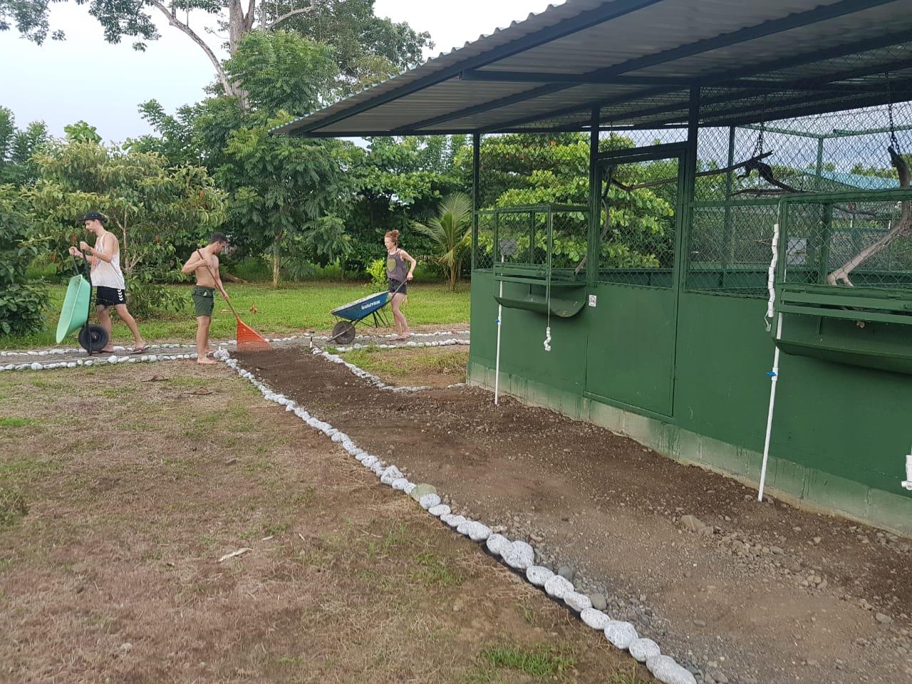 Volunteers help to build paths between the aviaries