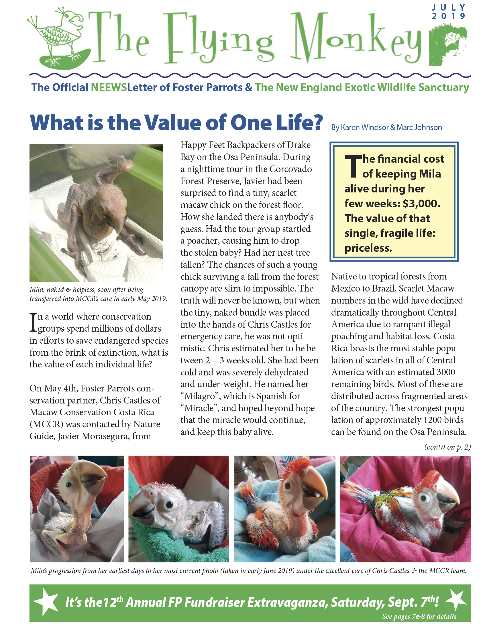 Here's the first page of the July 2019 Foster Parrots & NEEWSletter, featuring an article about MCCR's latest work with Mila, a scarlet macaw chick now in MCCR's care. Look below for the second page of the NEEWSletter…