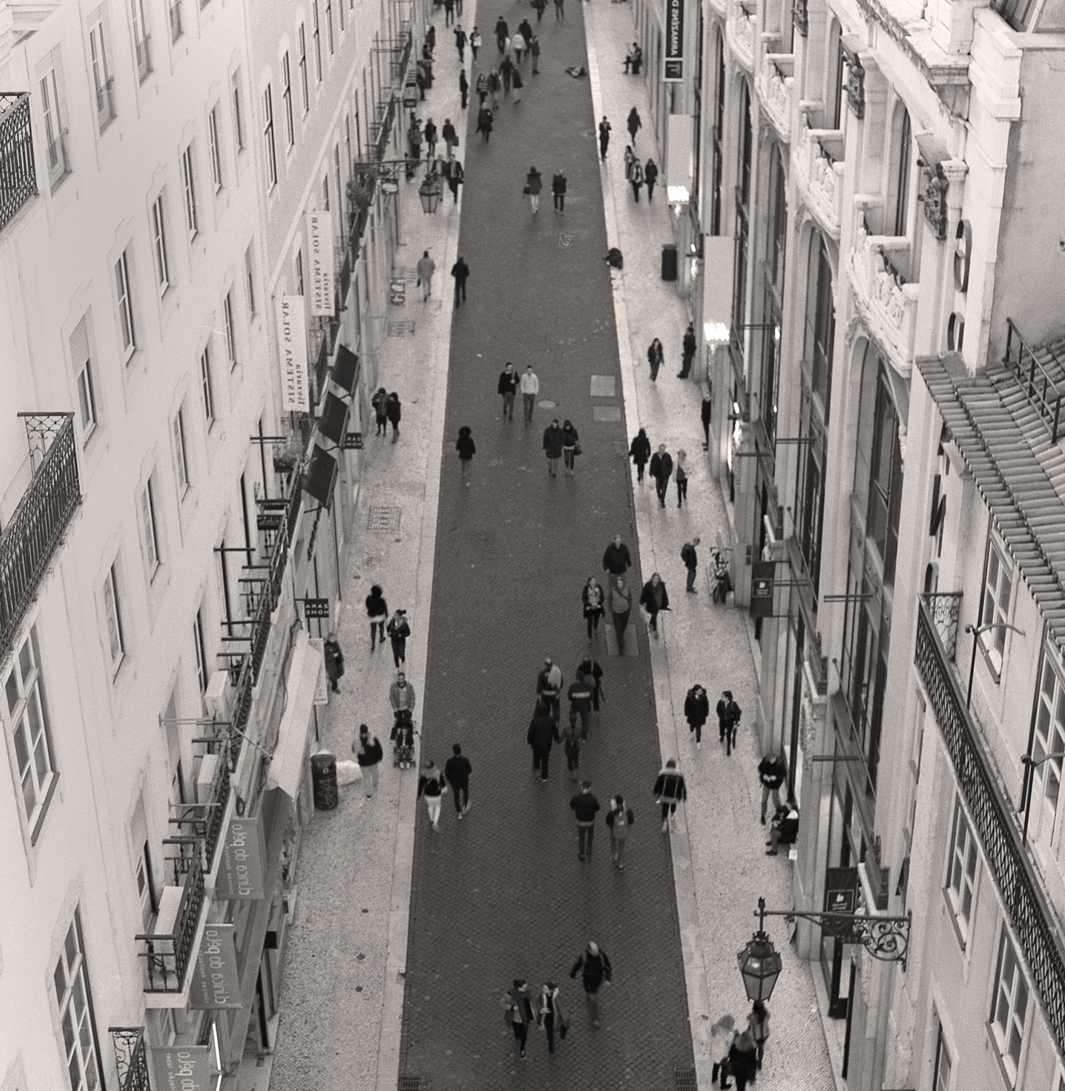 Lisbon Life