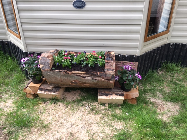 Carved log planter. £25.00 SOLD