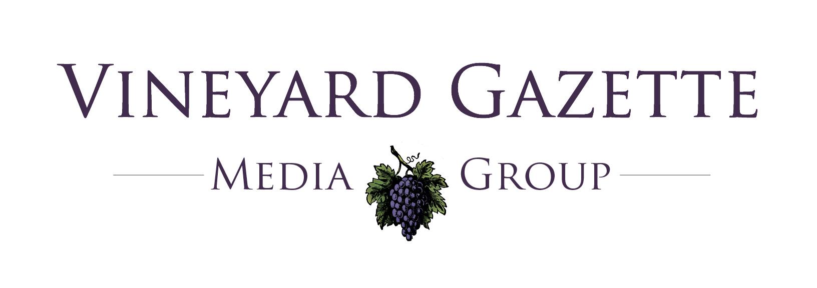VG Media Group logo COLOR.jpg