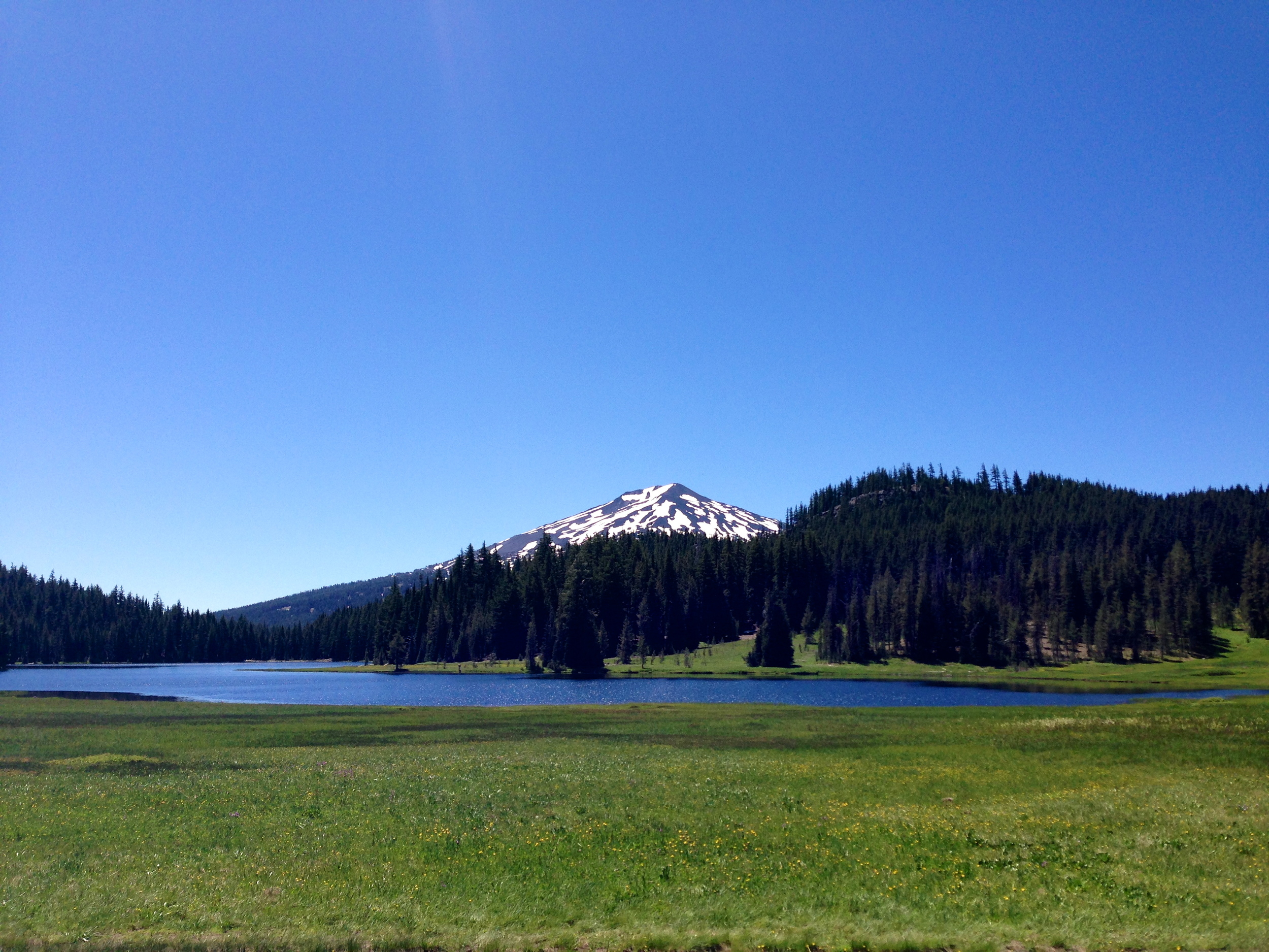 A view of Mt. Bachelor from Todd Lake, Oregon