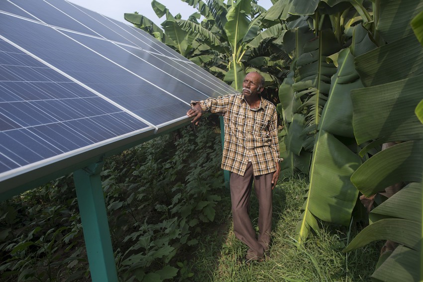 Farmer Raman Parmar uses solar power pumps to irrigate his farm in Anand. Photo Credit: IWMI/Prashanth Vishwanathan