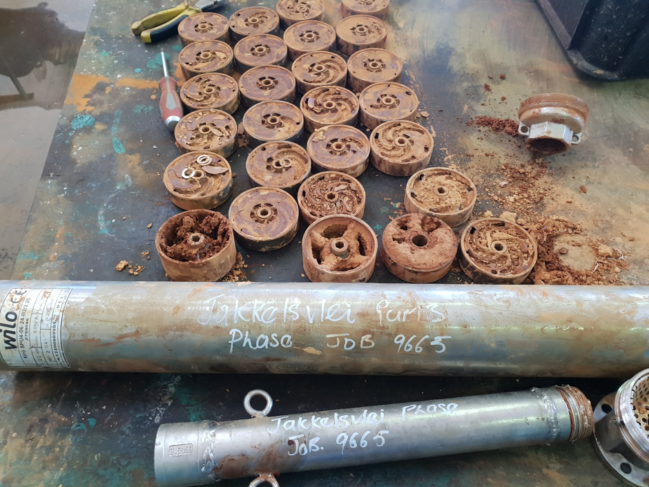 Pump impellers after 3 months without Harsonic device