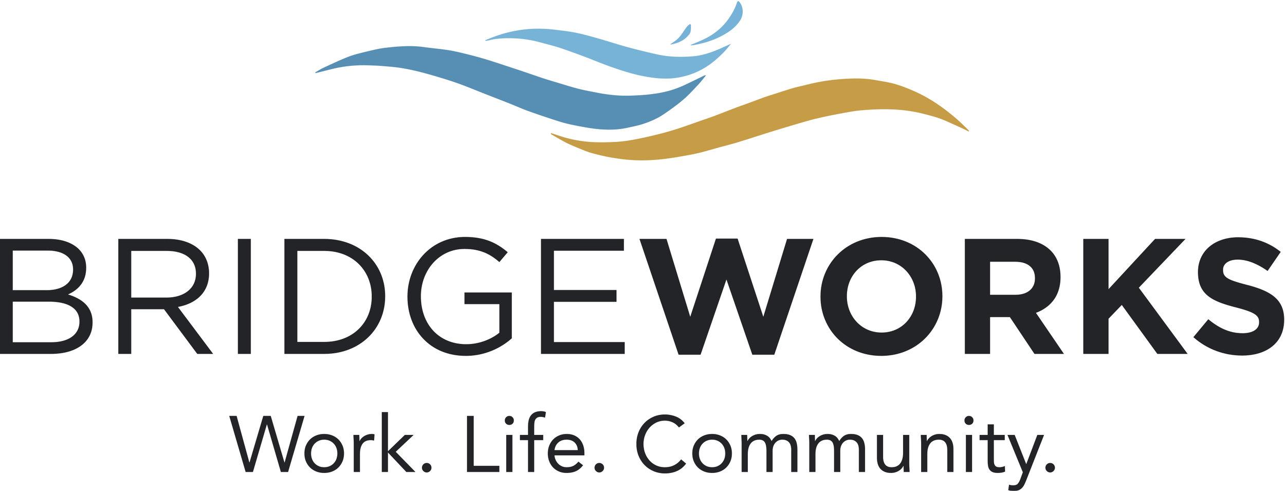 Bridgeworks-logo-vector.jpg