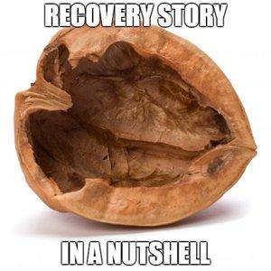 RecoveryStoryinaNutshell
