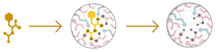 AA-MoleculeIllustration.png