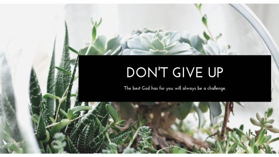 Blog Dont Give Up.jpg