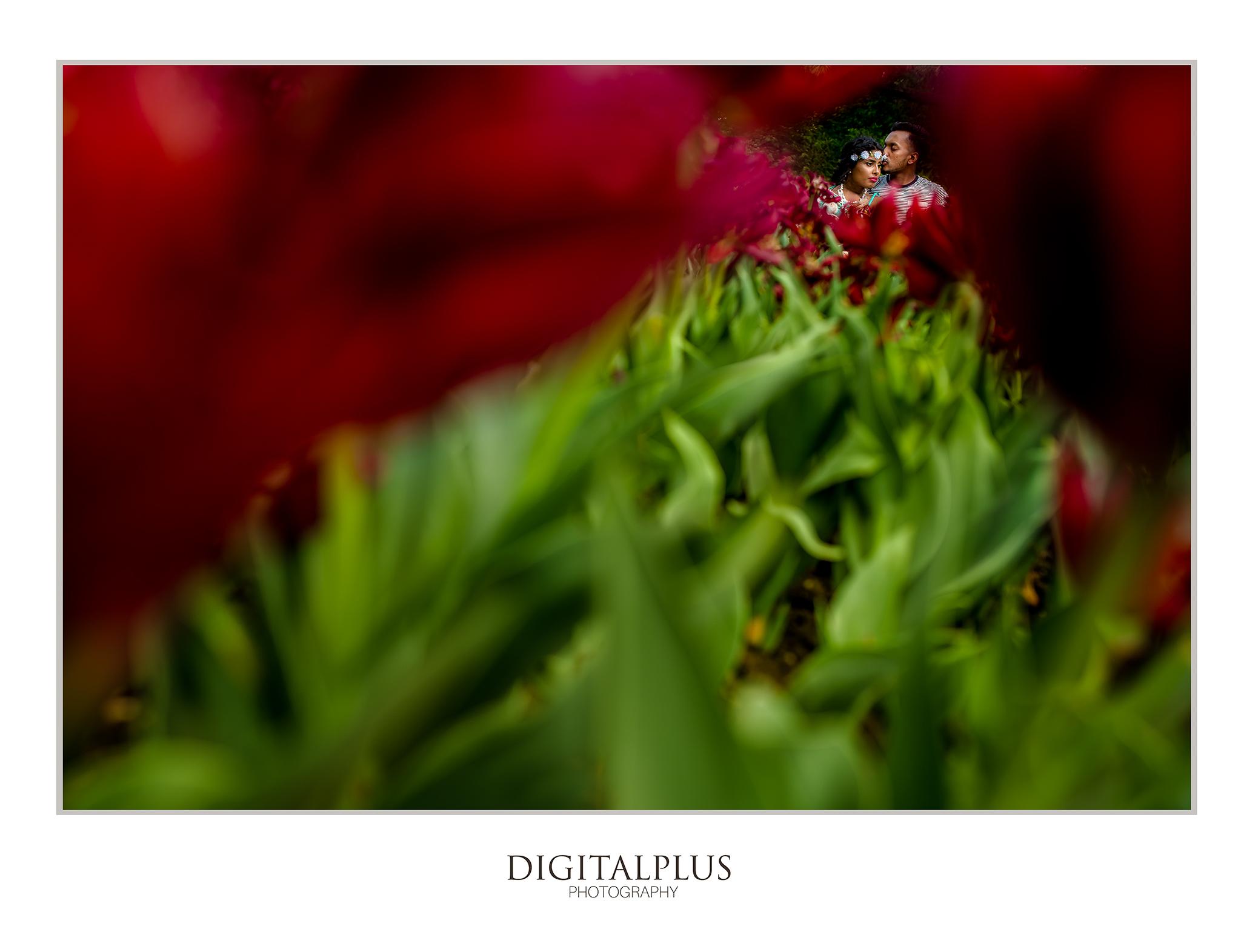 Thilani&Raj(E-Shoot2)-image07.jpg