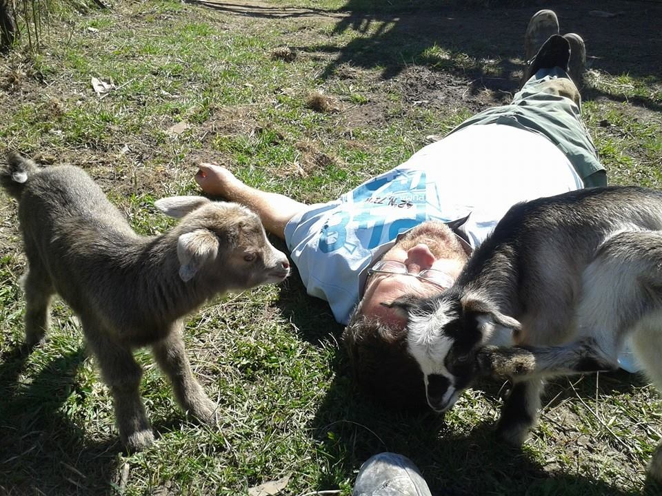 First baby goats!