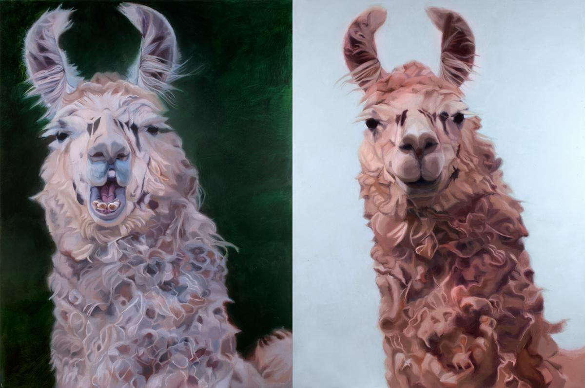 David Shepherd Wildlife Foundation's Wildlife Artist of the Year competition
