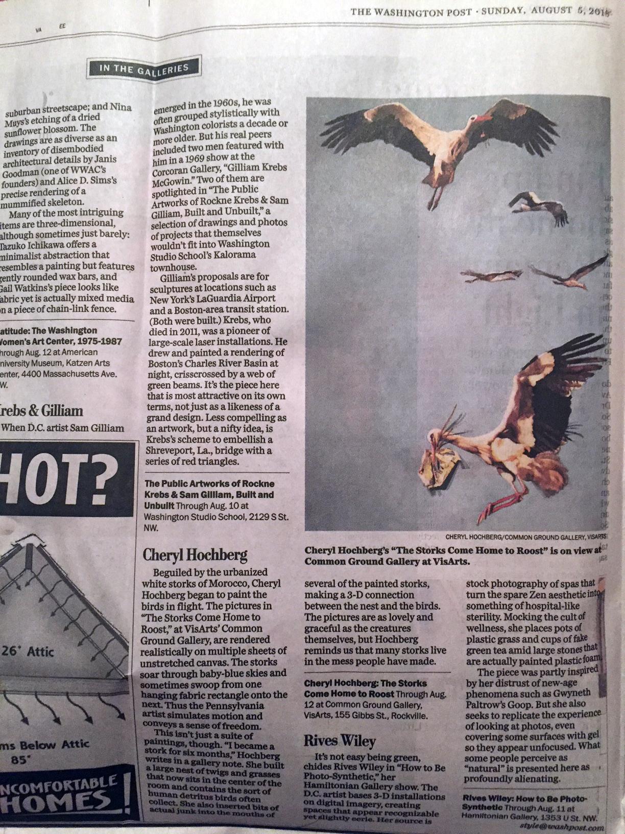 Washington Post review