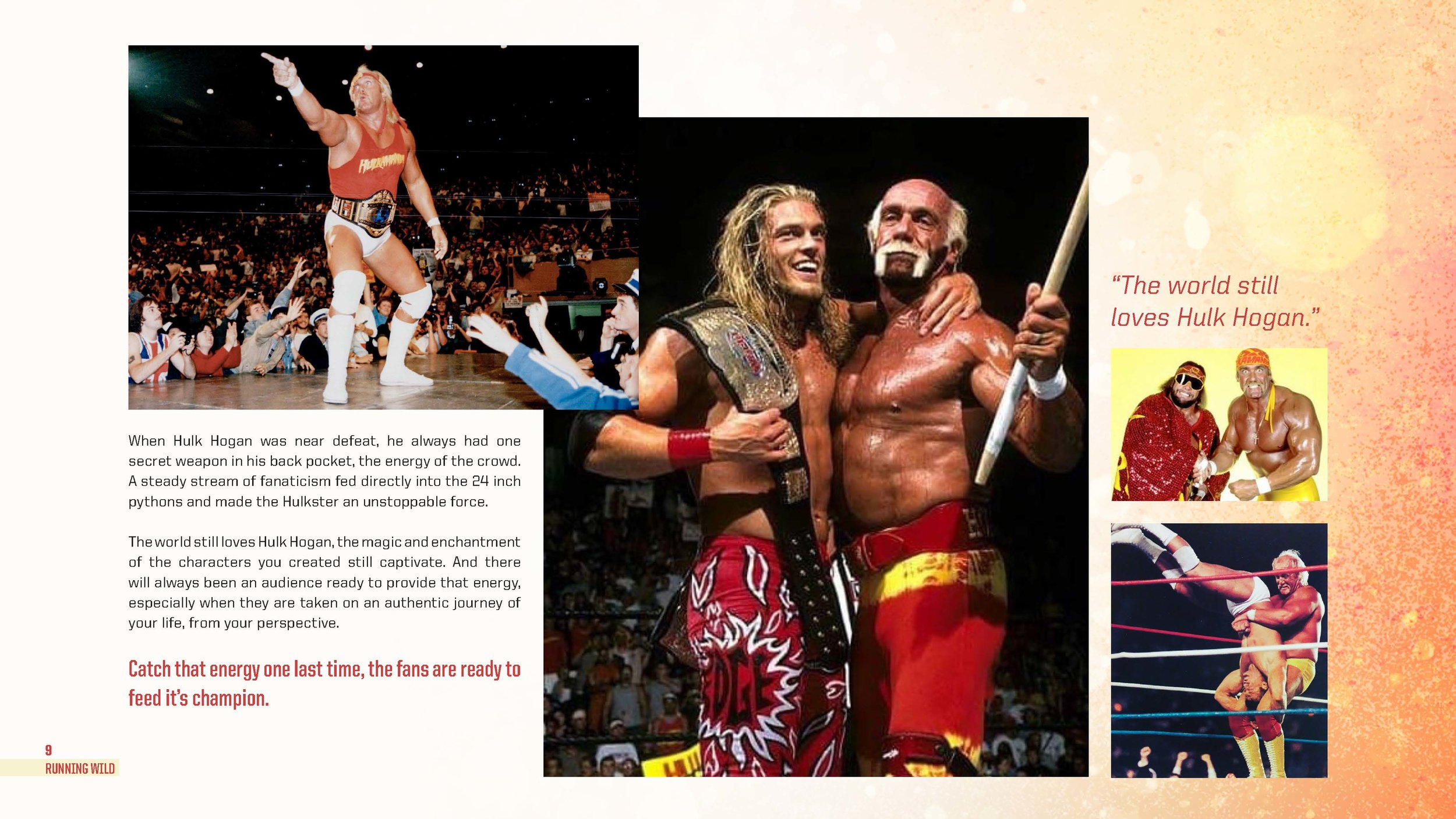 Hulk-Hogan-deck_Page_09.jpg