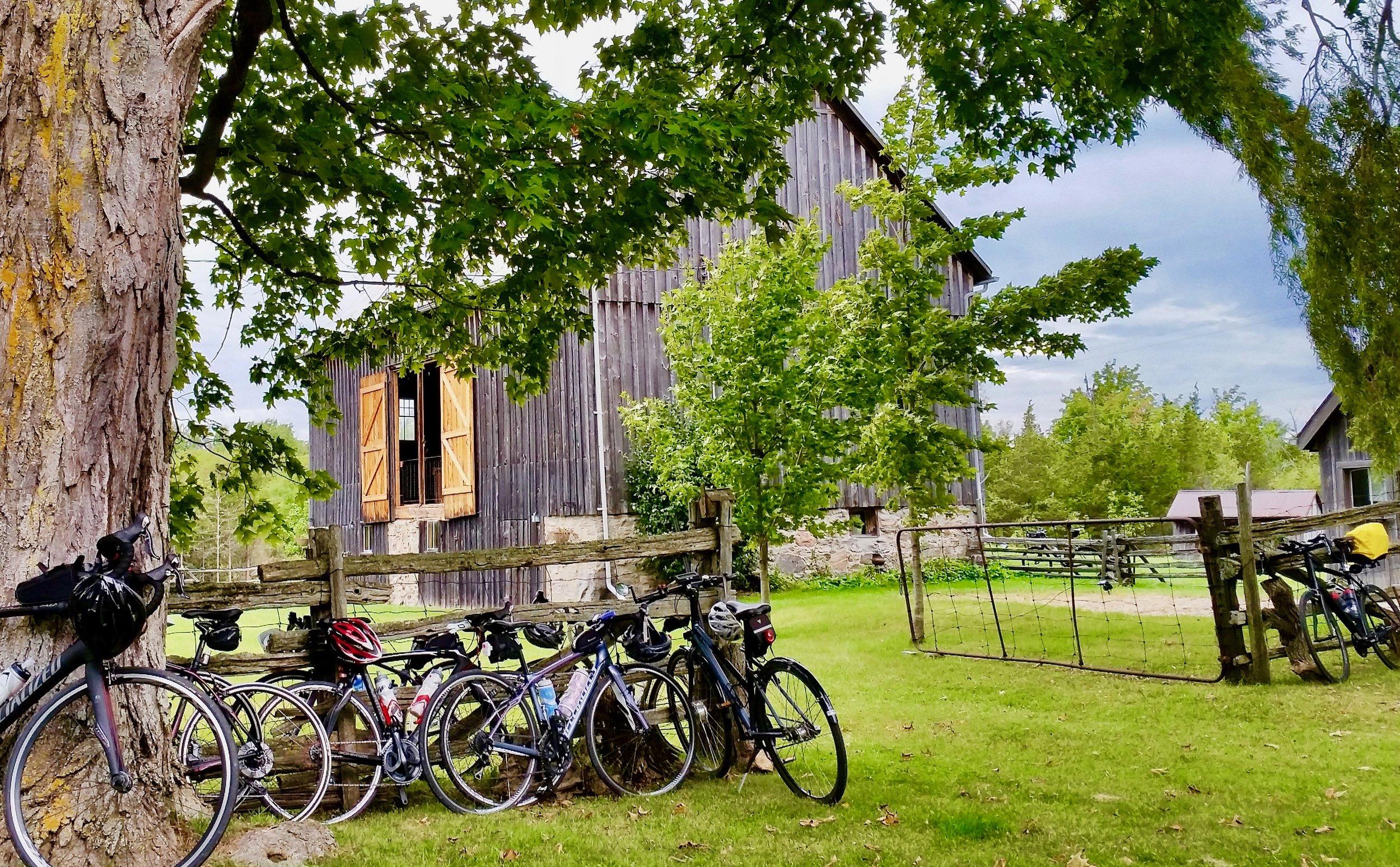 barn bikes.jpg