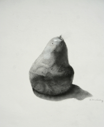 Graphite Drawing, Kelly McKillip