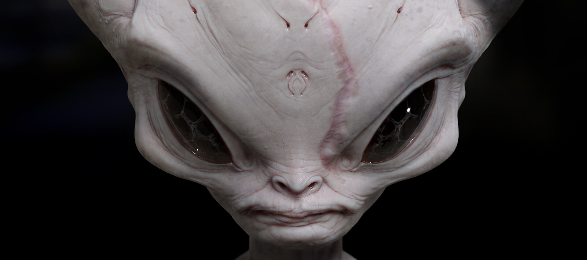 Alien_Jeff_McAteer_02.jpg