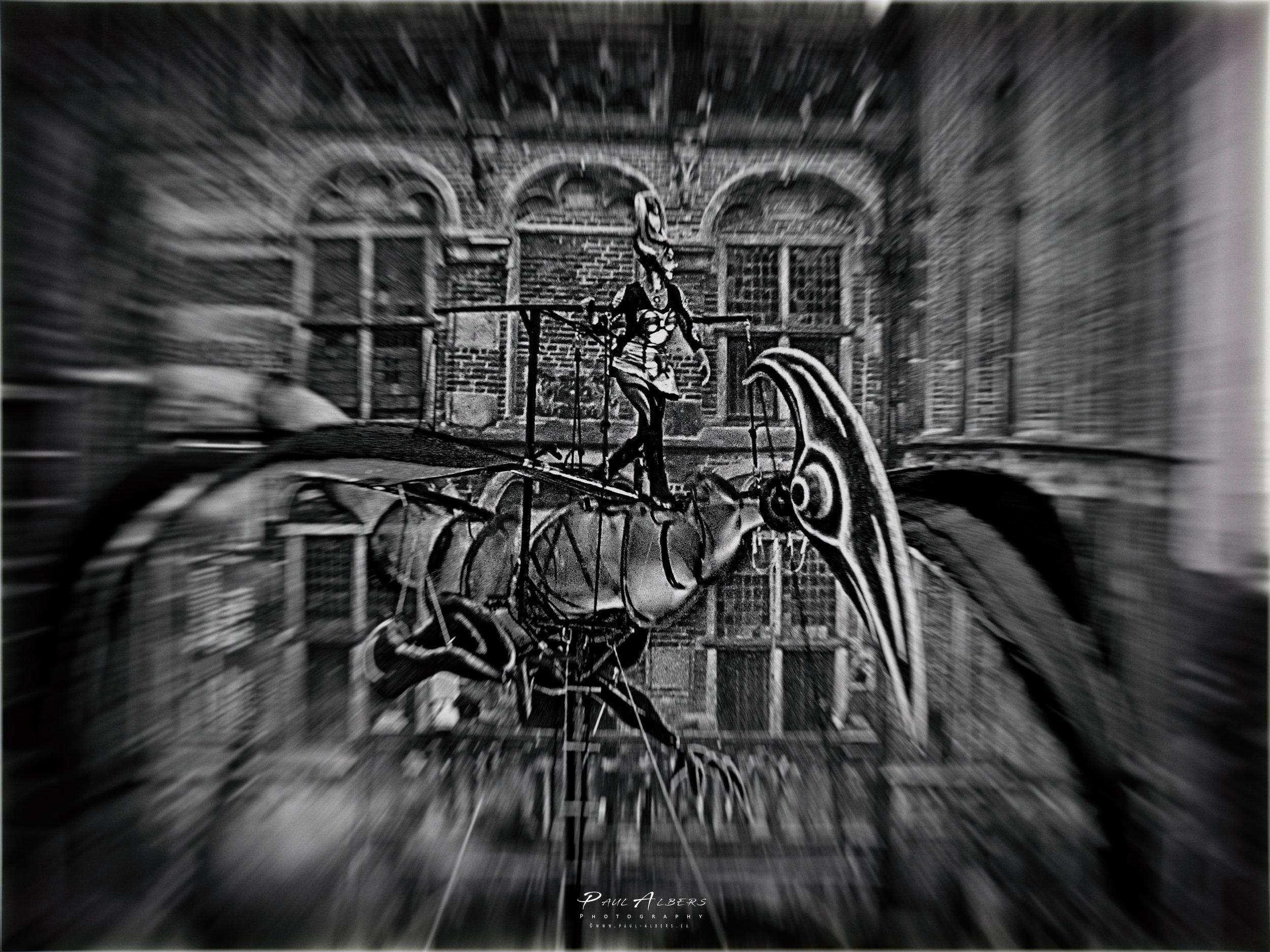 Paul-Albers-5x7-157.jpg