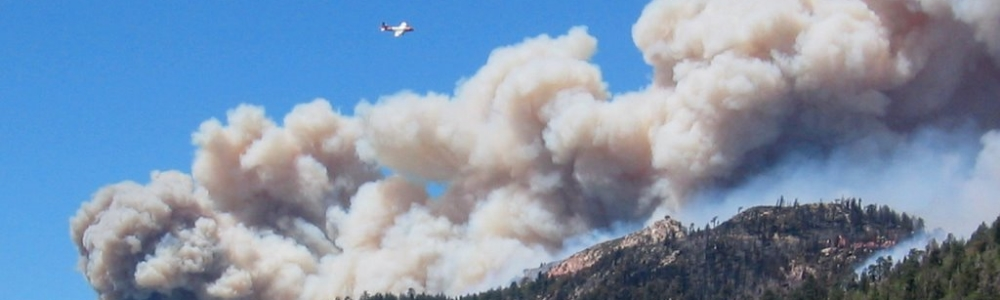 Air attack on the 2007 Butler fire (Photo by _____ Dennis Moran)