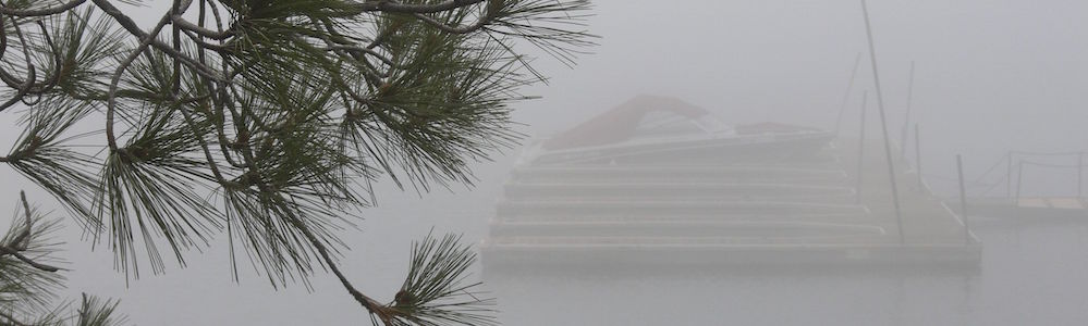 A foggy day along Spring Road -- May 2012 (Photo by Bob TeSelle)