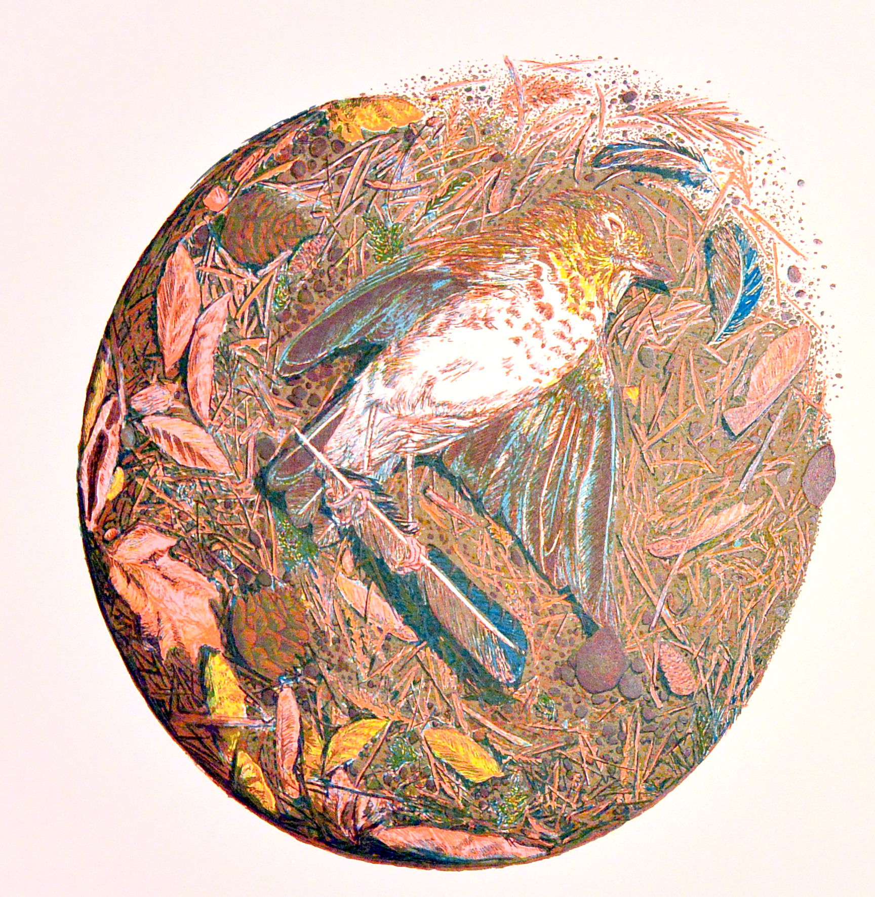 Layer 6, printed it a light magenta/red to give flesh tones to the bird's feet and add hue and detail to certain leaves and debris